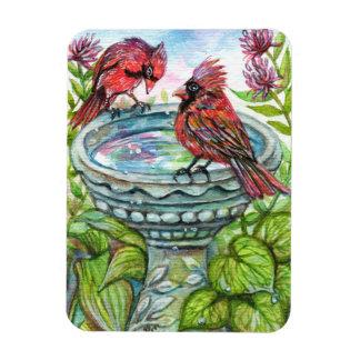 Bird Bath Magnet