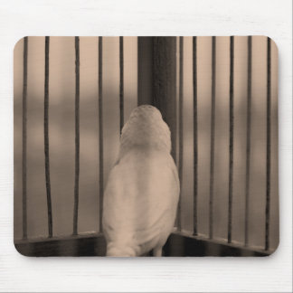 Bird, Cage, bars Mouse Pad