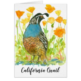 Bird California Quail Orange Poppies Card
