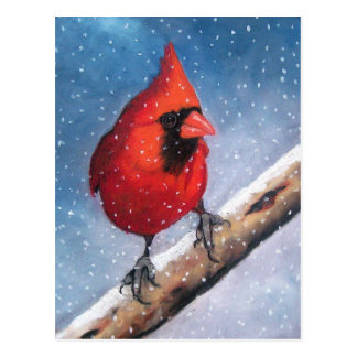 BIRD: CARDINAL: SNOW: OIL PASTEL ART POSTCARD