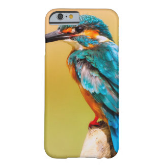 Bird Case for iPhone6/iPhone6s