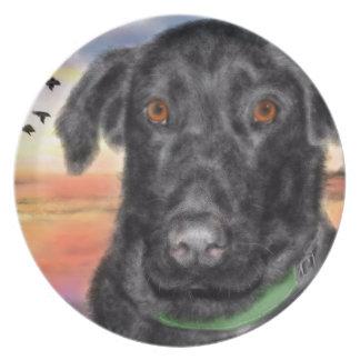 Bird dog plate