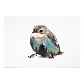 Bird Double Exposure Photo Print