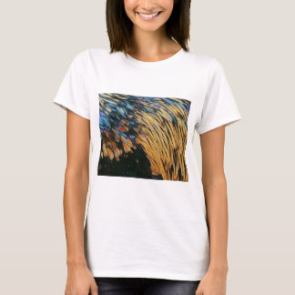 bird feathers Bird Feathers T-Shirt
