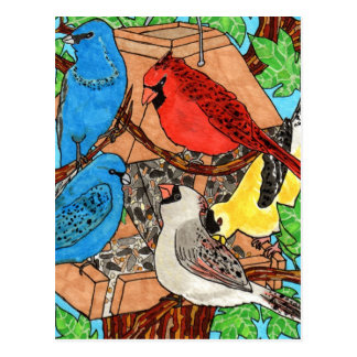 Bird Feeder Gathering Postcard