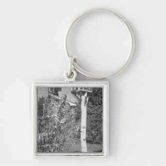 Bird house in garden Silver-Colored square keychain