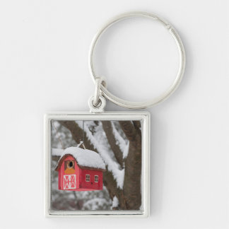Bird house on tree in winter Silver-Colored square keychain