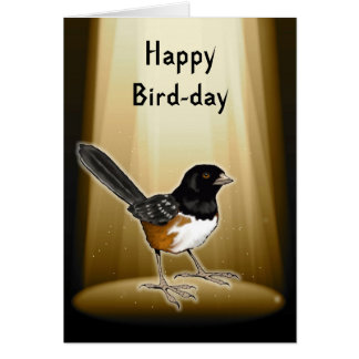 Bird in Spotlight, Happy Bird Day, Pun, Birthday Card