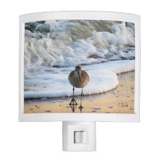 Bird in the Surf Nite Light