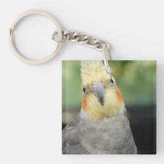 Bird Square Acrylic Keychains