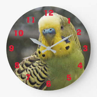 Bird Lovers Wall Clock