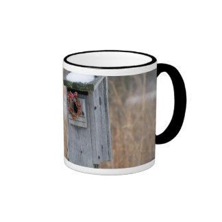 Bird, nest box with holiday wreath in winter ringer coffee mug