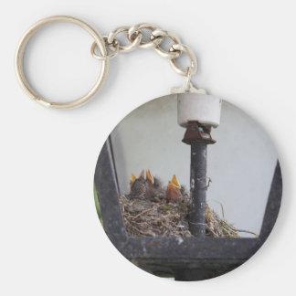 Bird nest in a street lamp. basic round button keychain