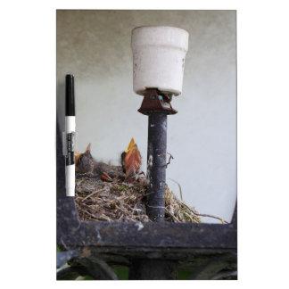 Bird nest in a street lamp. dry erase white board