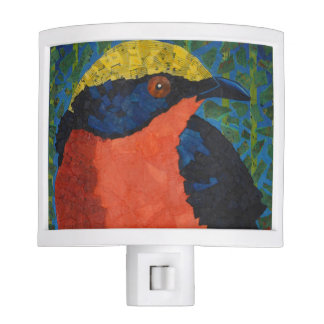 Bird Nightlight Night Lights