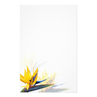 Bird of Paradise Blank Writing Paper Personalized Stationery