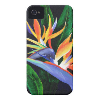Bird of Paradise Case-Mate iPhone 4 Case