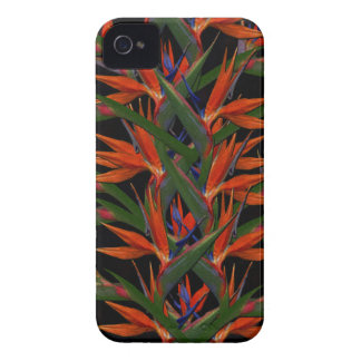Bird Of Paradise Case-Mate iPhone 4 Cases