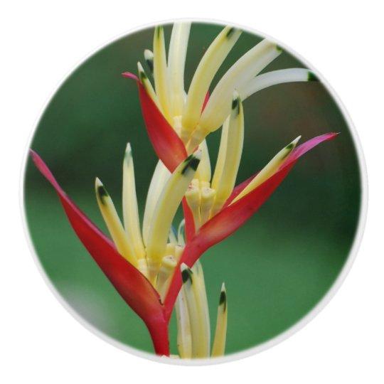 Bird of Paradise Ceramic Knob