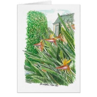 Bird of Paradise Flowers Card