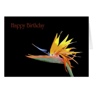 Bird of Paradise Happy Birthday Card