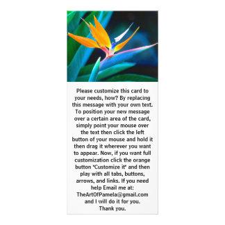 Bird Of Paradise (Hawaii) Full Color Rack Card