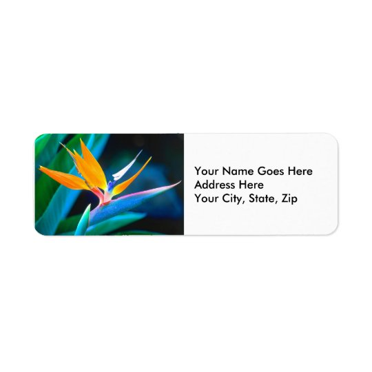 Bird Of Paradise (Hawaii) Return Address Label