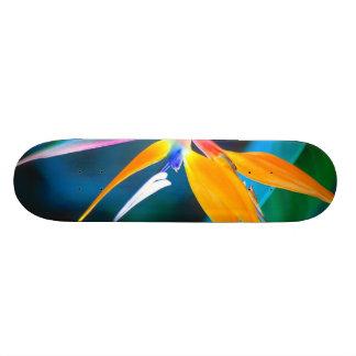 bird of paradise hawaii skateboard