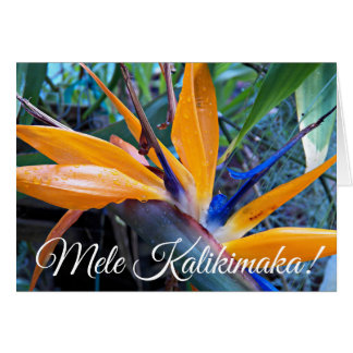 Bird of Paradise Hawaiian Holiday Card
