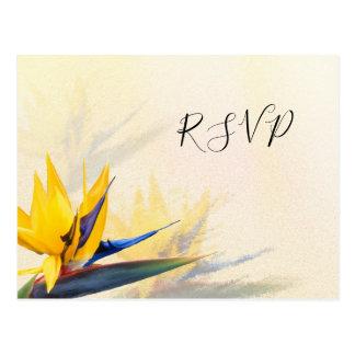 Bird-of-Paradise Hawaiian Wedding RSVP Postcards