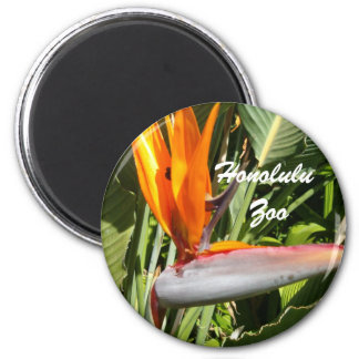 Bird of Paradise, Honolulu Zoo 2 Inch Round Magnet