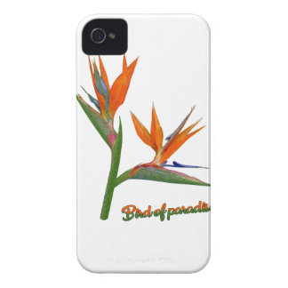 Bird Of Paradise iPhone 4 Case