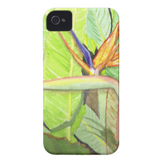 Bird of Paradise iPhone 4 Case-Mate Cases