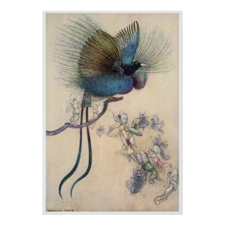 Bird of Paradise Print Warwick Goble