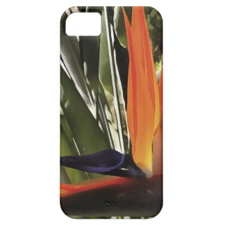 Bird of Paradise (Strelitzia) Case For The iPhone 5