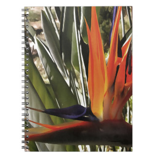 Bird of Paradise (Strelitzia) Spiral Notebook