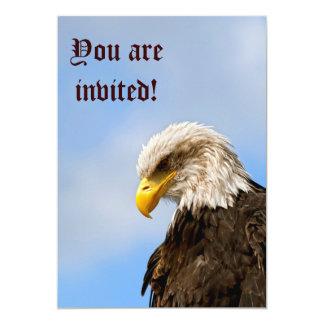 Bird of Pray Bald Eagle Card