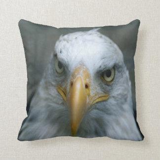Bird of Prey #21-Bald Eagle Throw Pillow