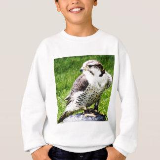 Bird of Prey #2-Peregrine falcon Sweatshirt