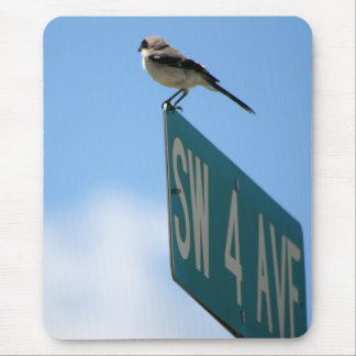 Bird on 4th Ave. mousepad