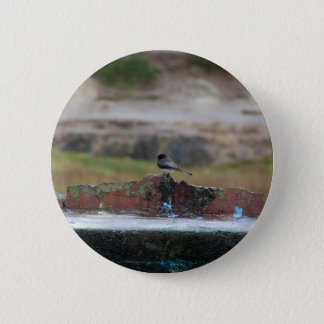 bird on a wall 2 inch round button