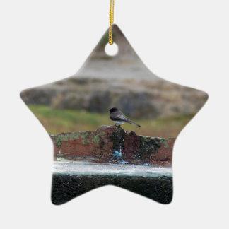 bird on a wall ceramic ornament