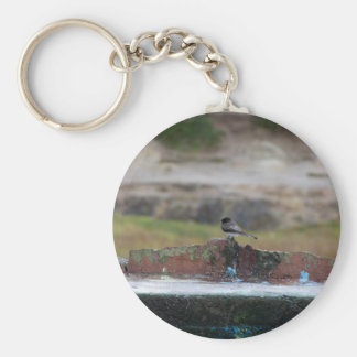 bird on a wall keychain