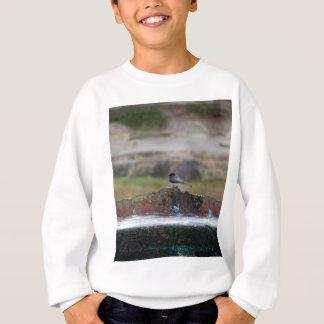 bird on a wall sweatshirt