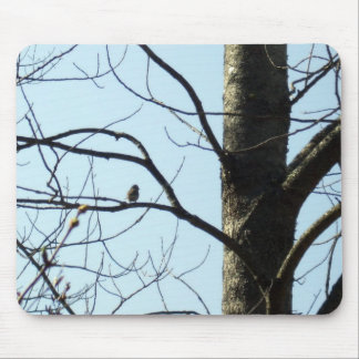 Bird on Branch Mouse Pad