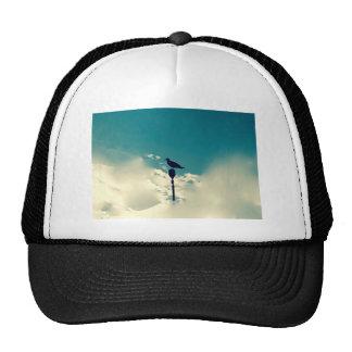 Bird on Post - Surreal Trucker Hat
