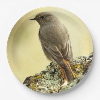 bird paper plate