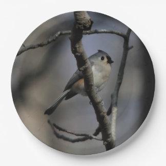 Bird, Paper Plates