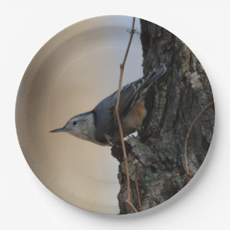 Bird, Paper Plates 9 Inch Paper Plate