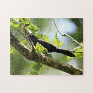 Bird, Photo Puzzle. Jigsaw Puzzle